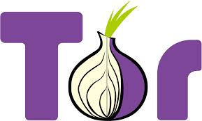 The Tor logo (courtesy of Google Images)