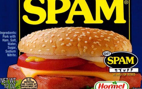 Does Anyone Care about SPAM?