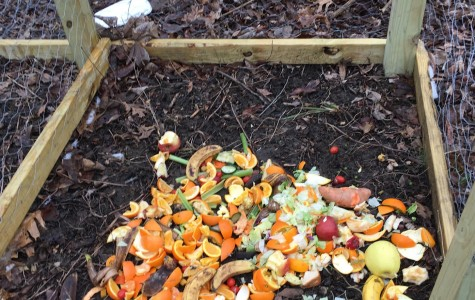 Day three of composting (picture taken by senior Emily Hamant).