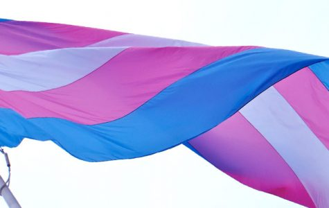 A flag representing the trans community waving in the breeze