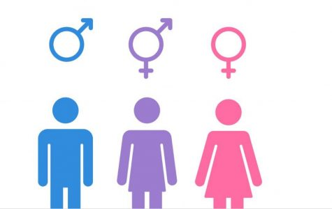 We are all equal no matter of our gender. Image courtesy of Google.