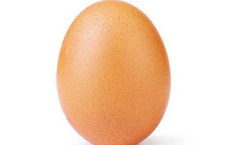 Insta Egg