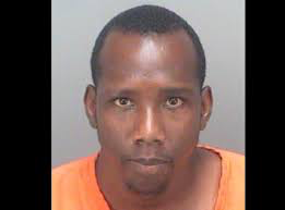 Florida Man Mayhem