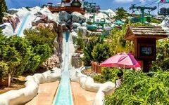 Disney Water Parks Reopen