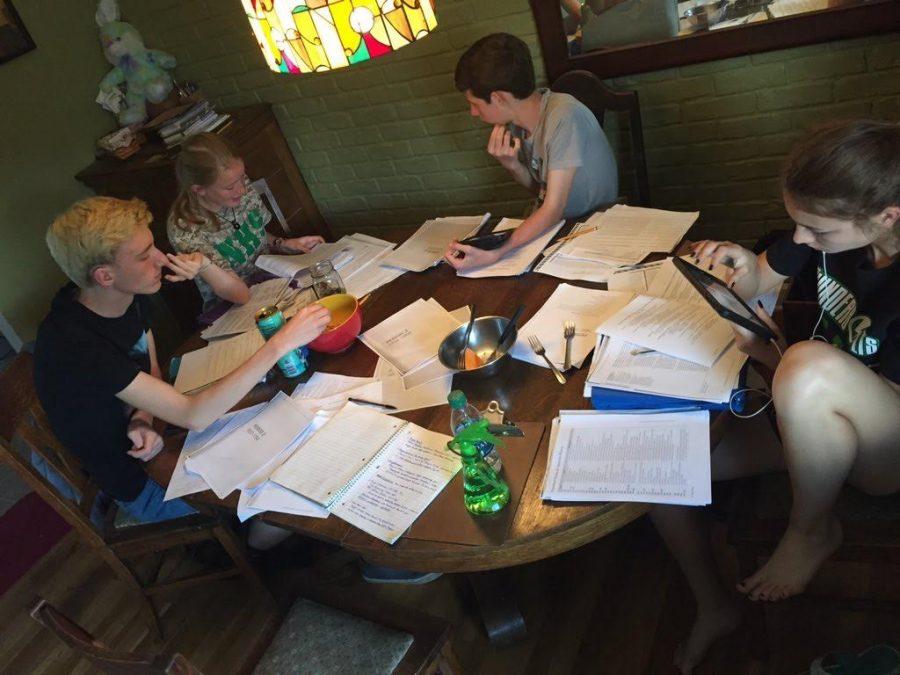 Sophomores+John+Pierron%2C+Alison+Hamant%2C+Austin+Schroeder%2C+and+Aubrey+Kosak+studying+for+their+AP+United+States+History+test.