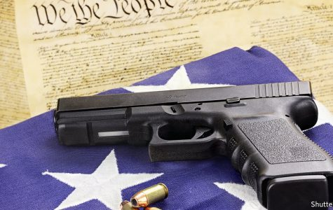 Recent events have led to the discussion of the Second Amendment (courtesy The Economist).