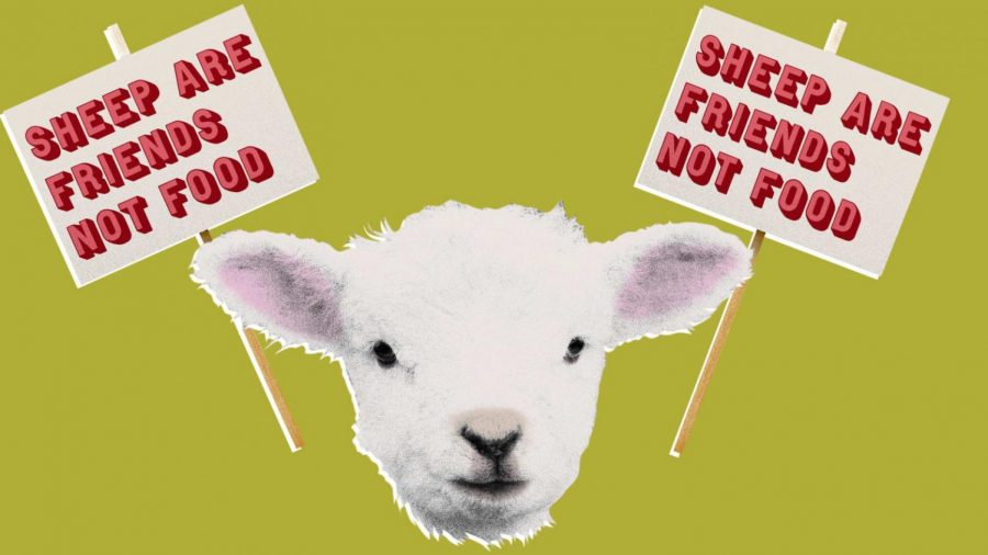 Lambs Are Friend Not Food, Don't Slaughter Them.
