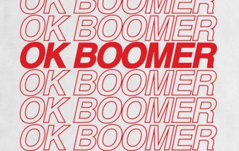 'Ok Boomer' TV Show?