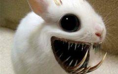 horror of the Ester bunny.