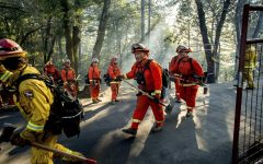 Californian inmates heading out to fight a fire.