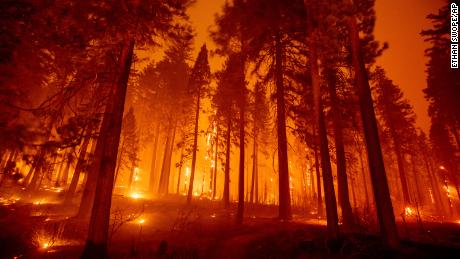 The Effect Of California Wildfires